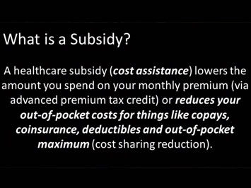 What is a Subsidy Explained